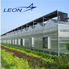 Leon Series Hollow Polycarbonate Greenhouse For