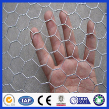 Lowest price decorative chicken wire mesh/hexagonal wire mesh