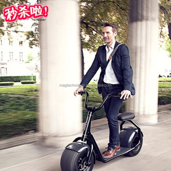 New Arriver big two wheels 80km range 2016 newest citycoco 2 wheeler rough road city scooter