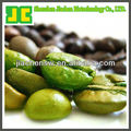 Natural 10%~50% Chlorogenic acids Green coffee bean extract