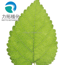 factory supply high quality Mulberry leaf extract with DNG 1%