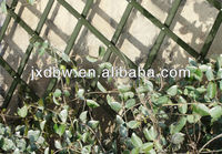 90X180CM Green Painted Wood Expanding Garden Trellis