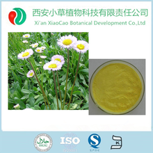 Factory supply Erigeron Breviscapus extract/Breviscapine 90%-95%/Expansion of cerebral blood vessel