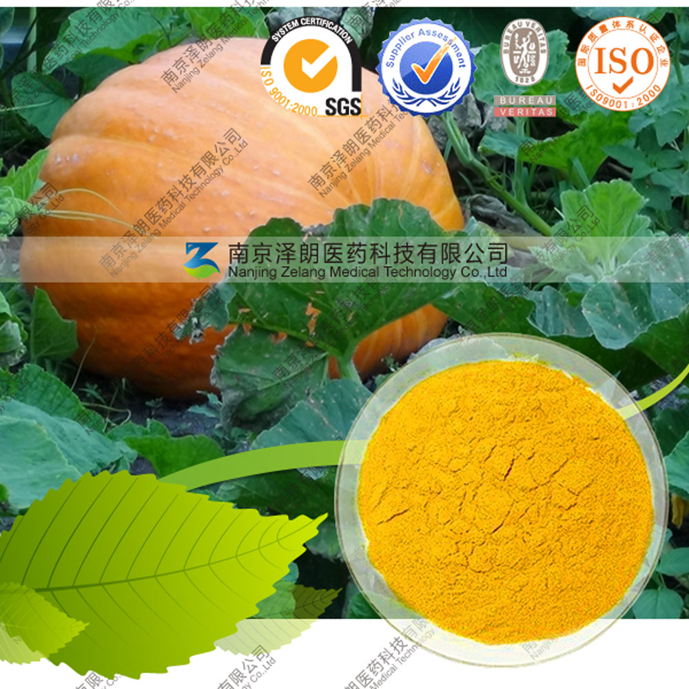 Factory Supply 100% Natural and Pure Dehydrated Vegetable Powder Pumpkin Powder
