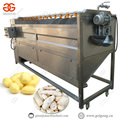 Industrial Factory Brush Type Yam Ginger Potato Washing Cassava Peeling Machine Price