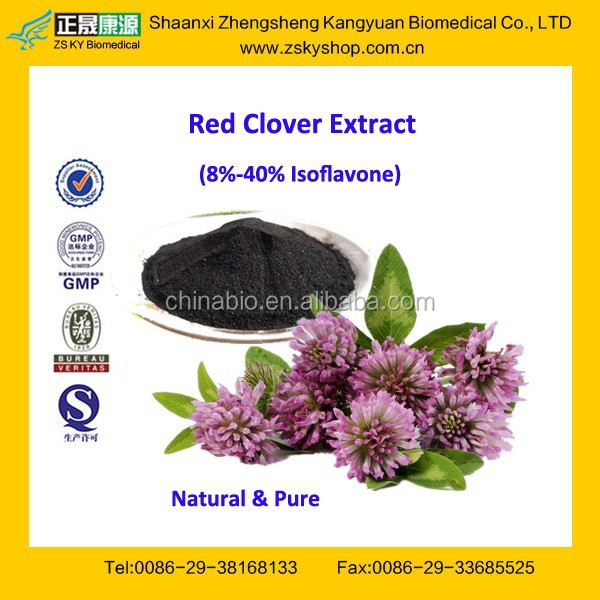 GMP Factory Supply Free Sample Red Clover Extract Powder
