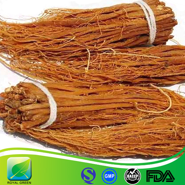 Factory wholesale panax ginseng root extract 10%-80% ginsenosides / WILD korean red Ginseng