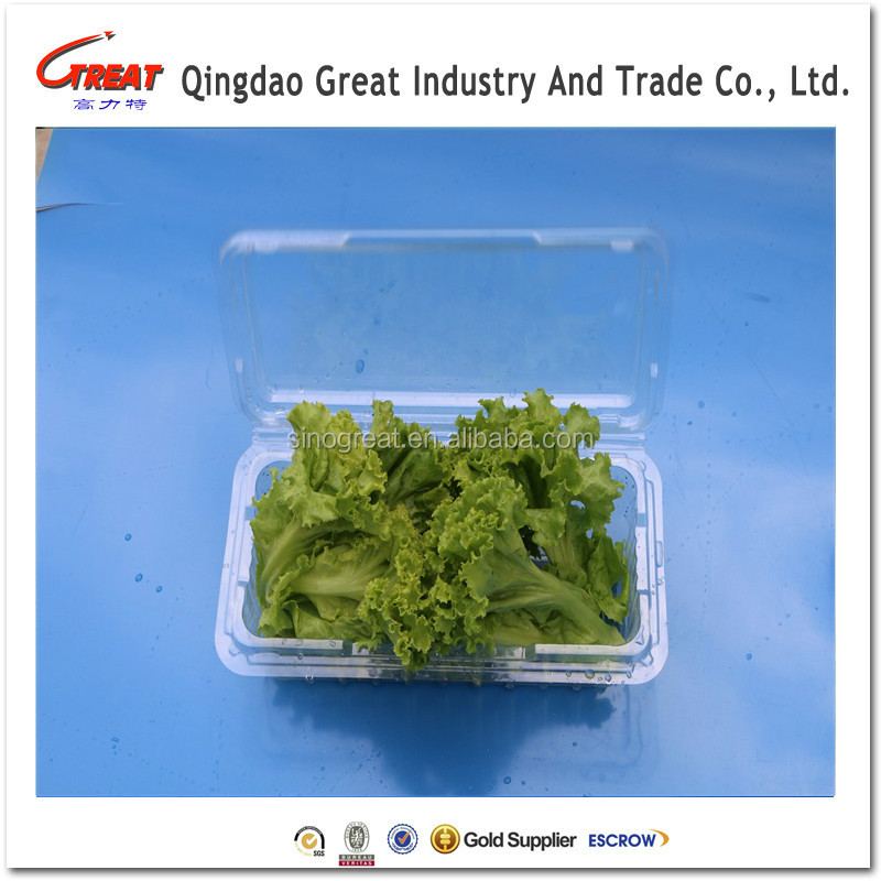 Promotional plastic fruit and vegetable packaging trays with lid