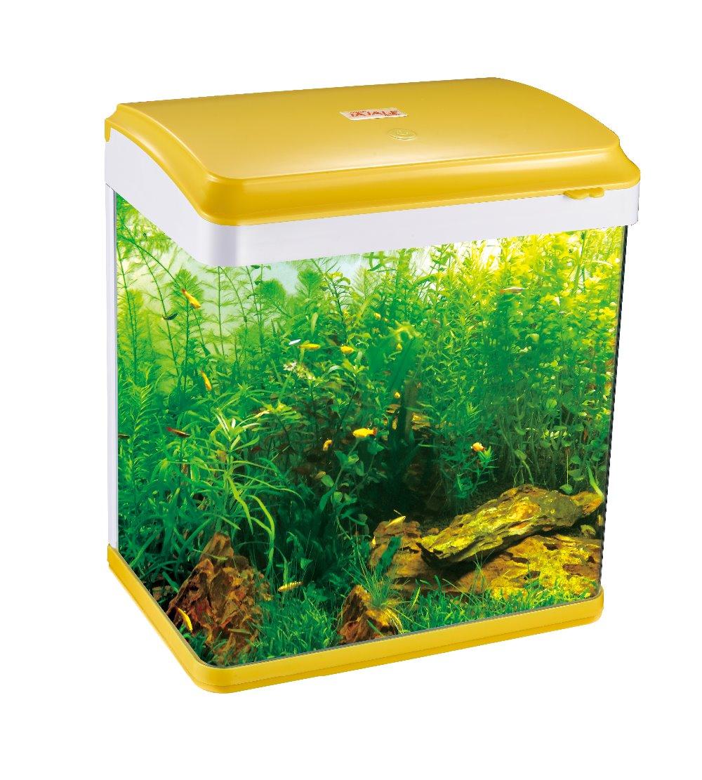 Fish Tank Aquarium Tank Glass Fish Tank Iq C380 Buy