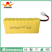 2*10AAA300 NI-CD 24 volt rechargeable battery pack