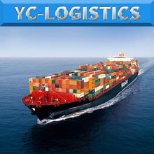 Shenzhen Forwarder Sea Freight Service From China