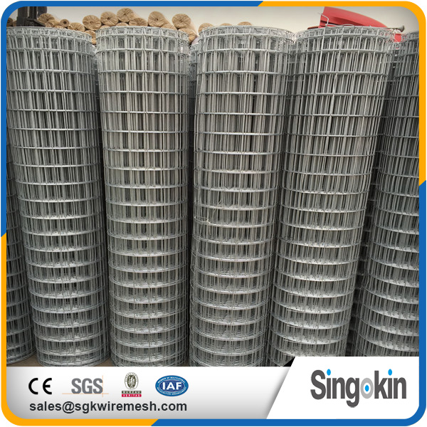 Well reputed 10 gauge welded wire mesh roll black welded wire mesh panel