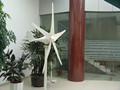 Best price low rpm 300w 12v/24v wind generator with CE ISO made in China