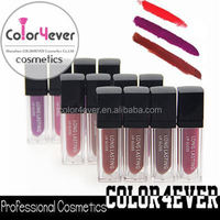 High quality wholesale matte lipstick make your own lipstick