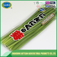 Most popular natural garlic sprout for exclusive distributor