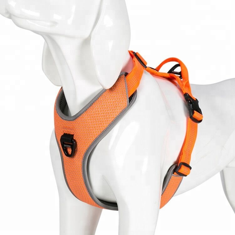 Truelove <strong>Dog</strong> No Pull <strong>Dog</strong> Harness Adjustable <strong>Dog</strong> Harness with Handle