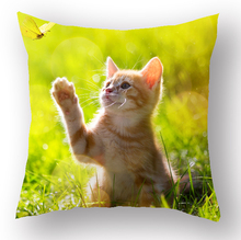 Wholesale latest custom design cat printed 3d cushion cover custom pillow cases