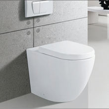 R276B China Sanitary Ware Gravity Flushing Floor Back To Wall Toilet