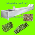blanching machine/equipment/plant