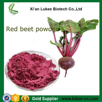 Hot sale Red beet root P.E. powder / Red beet root juice powder