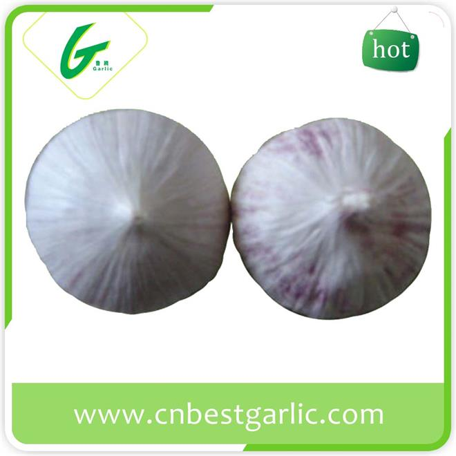 Bulk new china garlic rate for sale