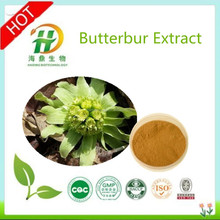 2015 Best Selling And Organic Herb Butterbur Extract
