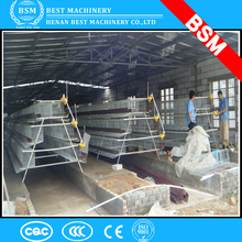 Poultry Breeding Equipment Automatic Layer Chicken Cage / Hot Sales House Chicken