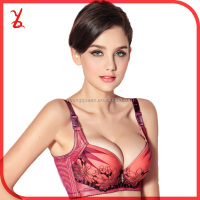 YN81 Brand embroidery lace beautiful bra sexy bra design