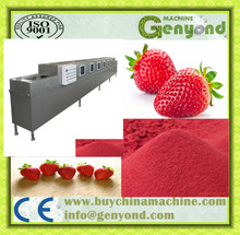 Lab spray dryer for strawberry powder making process