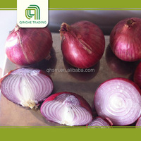 Cheap 20kg mesh bag 7cm 8cm middle fresh red onion frozen container with great price