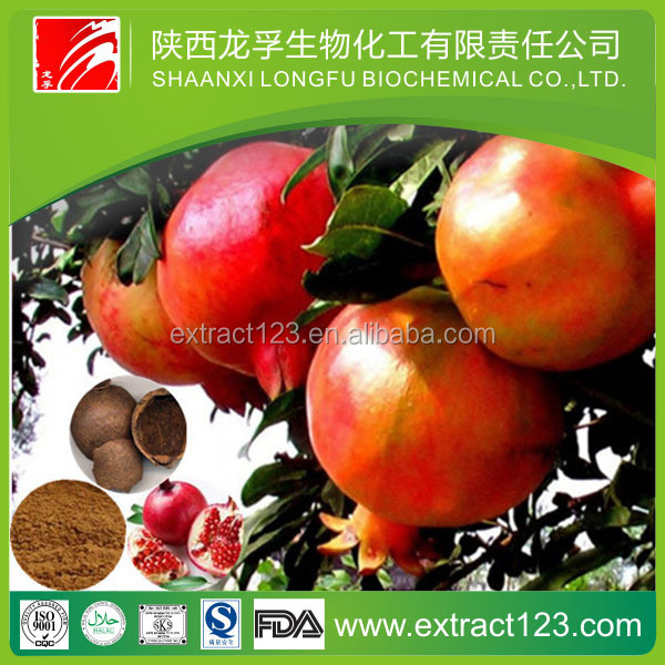 Manufacturer supply pomegranate seed oil extraction powder