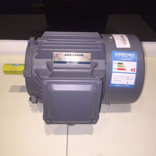 SIEMENS BEIDE 1TL0003 Premium efficiency IE3 Low-voltage Motor