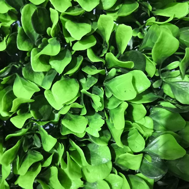 New style plastic artificial green wall for vertical plant wall decoration