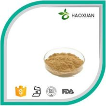 2018 hot sale Direct manufacturer supply natural ganoderma lucidum extract essence