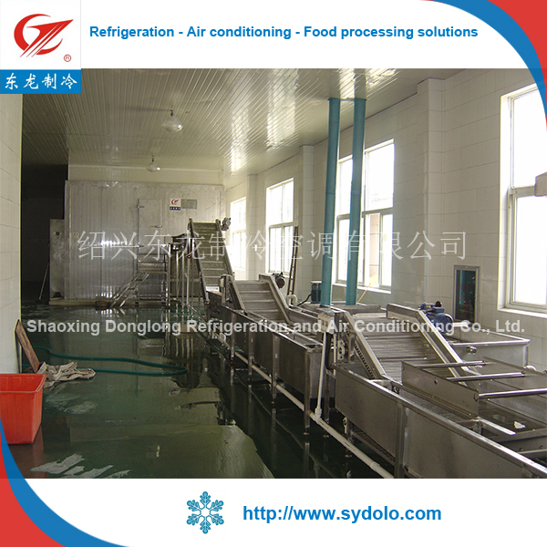 industrial mango/strawberry/blueberry/sweet corn frozen production line type fruit & vegetable processing machines
