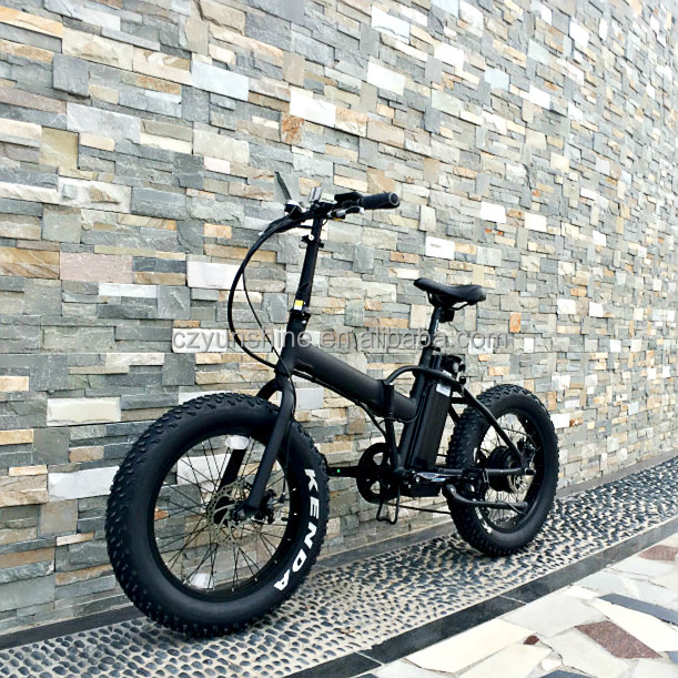 Changzhou Yunshine 20inch fat tire electric bike, exercise bike fold