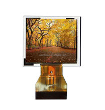 main push 1.5 inch sports DV/projector/toys lcd display 480 x 240 dots