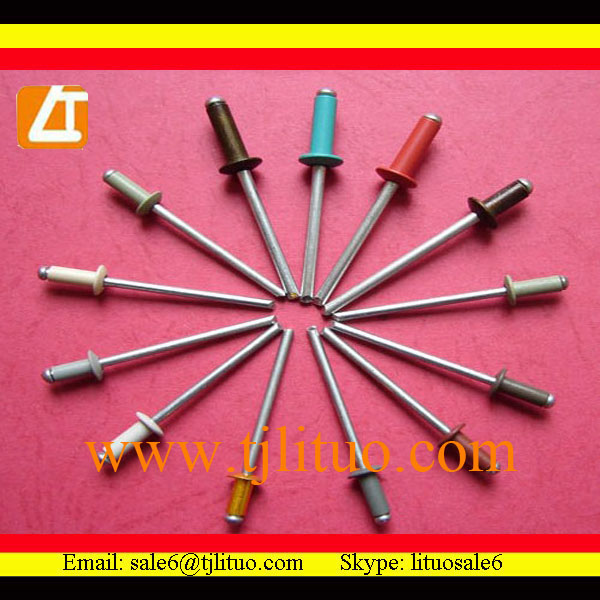 High quality good price drawing rivet