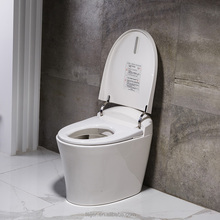 Automatic wash flushing smart wc toilet with two nozzles