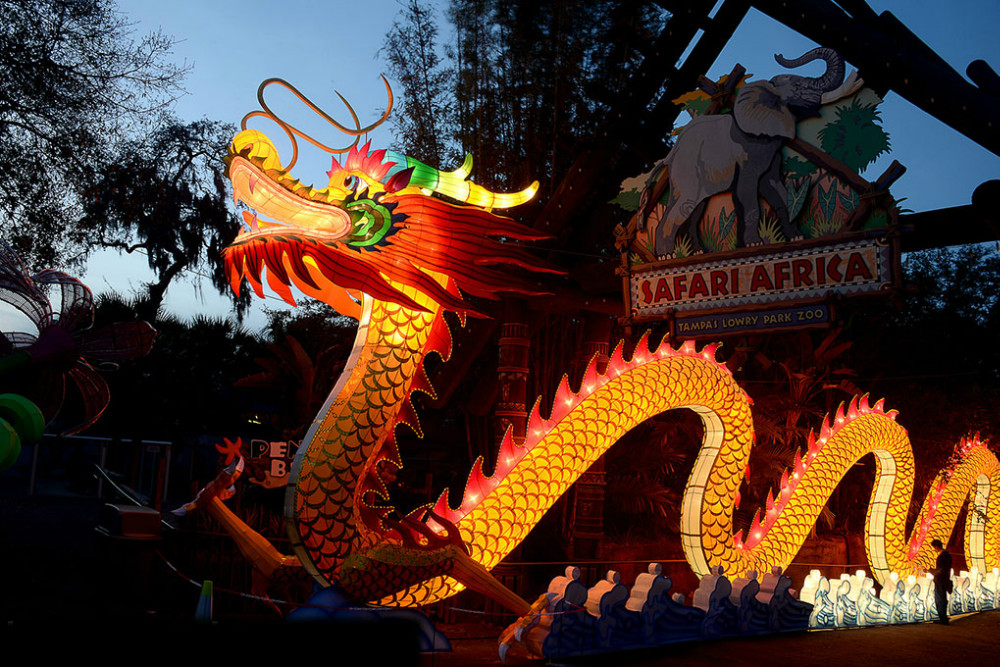 long dragon lantern