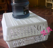 100% pure PE material folding live chicken cage to transport
