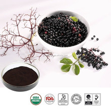 Honghaoherb ingredients pure black chokeberry extract powder