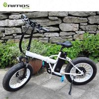 China made strong motor Mountain Electric Bike With Disc Changzhou Aimose