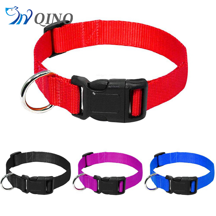 QN-A-6563 dog collars pitbull