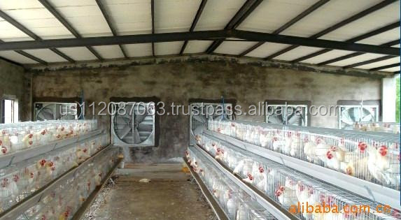 automatic poultry farming cooling system exhaust fan for chickens