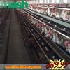 high quality/cheap chicken cages/quail cages