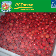 IQF frozen unpitted sour cherry