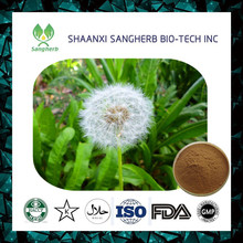 Factory price dandelion root powder extract for wholesale