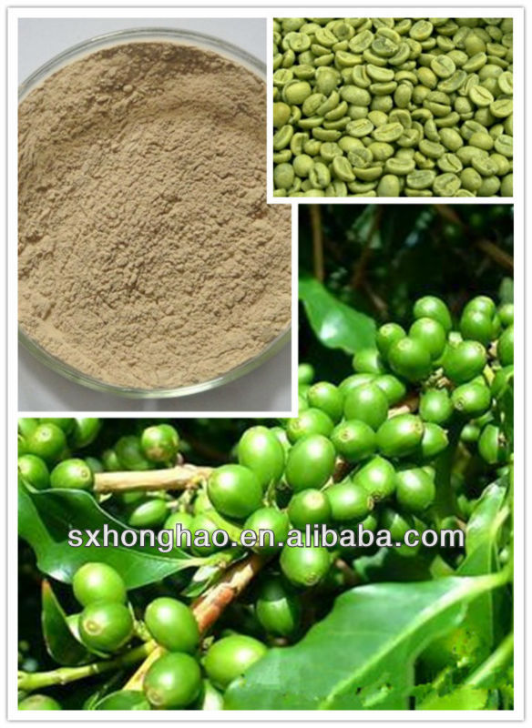 Herb Plant Powder Green Coffee Bean Extract
