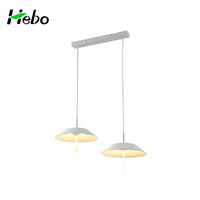 China Led Light Fixtures Home Suspension